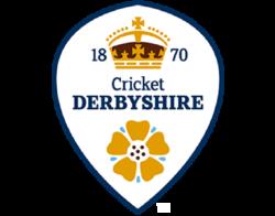 Derbyshire Cricket Foundation Logo